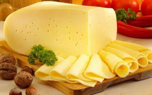 Как сыр защищает от хрупкости костей?