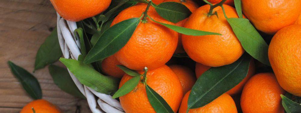 Медики назвали фрукт, укрепляющий кости