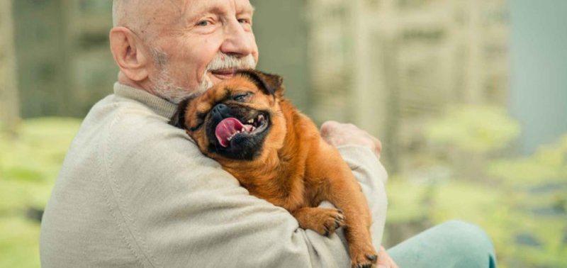 Прогулки с собаками приводят к травмам у пожилых людей