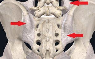 Боль в спине — понимание со стороны современной медицины