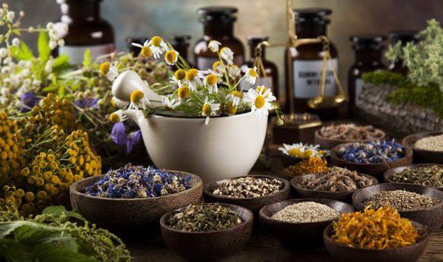 Шесть растений от суставных болезней