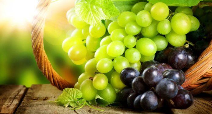 Употребление этой ягоды облегчает боль в коленях