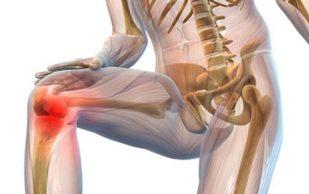 Как сохранить здоровье суставам и предотвратить разрушение костных хрящей
