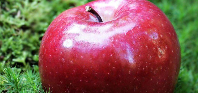 6 фруктов, которые помогают при артрите
