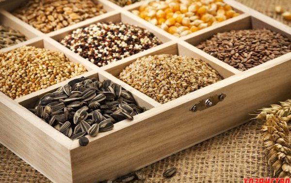 Семена для садоводов и фермеров: огромный выбор продукции в «Ботаник Стор»