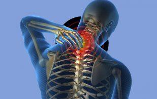 Остеохондроз, грыжи и протрузии позвоночника. Советы врача — как снять боль в пояснице
