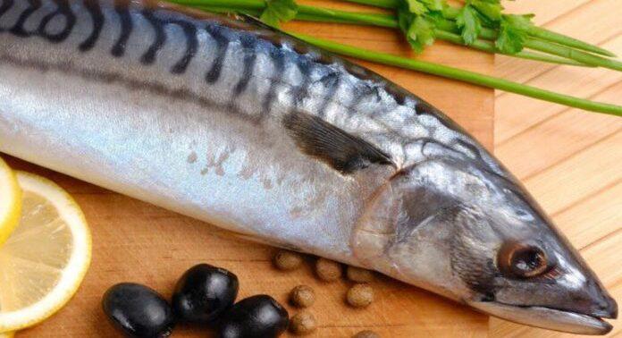 Названа рыба, помогающая справиться с артритом