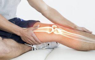 Названы продукты, защищающие кости от переломов