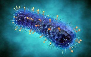 Софосбувир от гепатит С