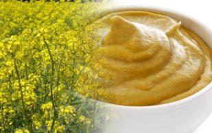 Рецепт мази от воспаления суставов