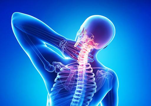 Связь позвоночника с другими частями и органами тела