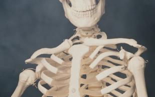 Крепкие кости: продукты для прочного скелета