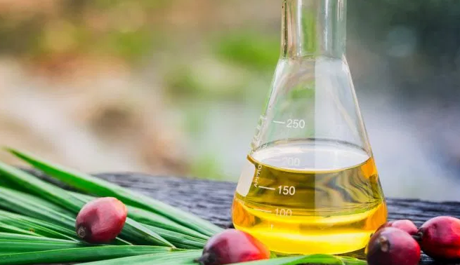Профилактика остеопороза: компонент пальмового масла — токотриенол