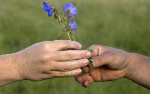 Остеопат: вредно ли хрустеть пальцами