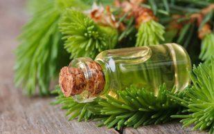 Мед, полынь и сосновые ветки при гигроме