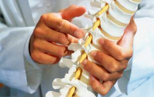 Быстрая регенерация костей будет возможна с новым средством