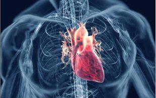 Ревмокардит: рецепты народной медицины