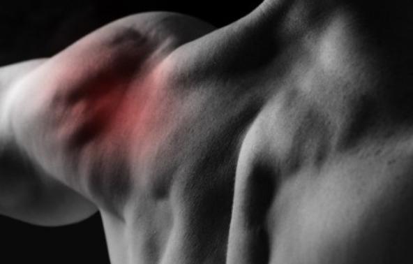 Ученые разработали гель, который может заменить поврежденные хрящи в суставах