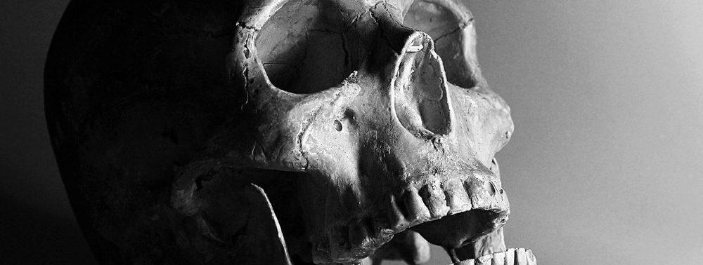 Новое покрытие имплантатов искусственной костью предотвратит воспаления