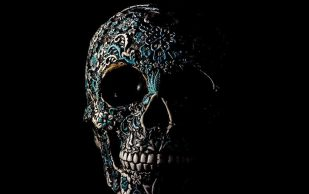 Ученые создали трансплантаты, восстанавливающие кости и хрящи