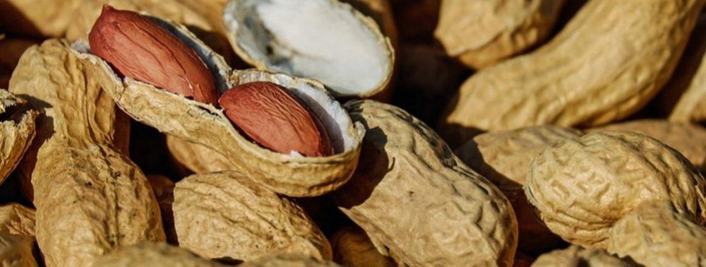 Снижает холестерин, предотвращает боль суставов и рак: один из лучших продуктов зимой