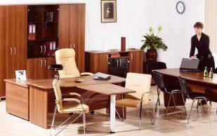 Офисная мебель для директора от компании Найс-Офис