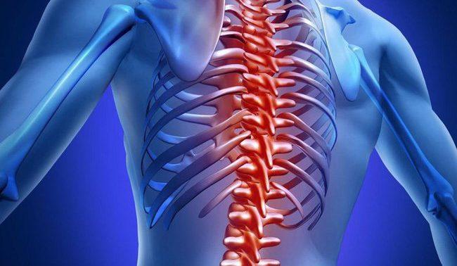 5 Традиционных мнений о здоровье костей