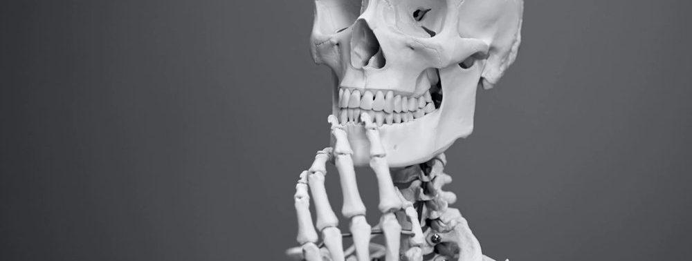 Ученые нашли стволовые клетки, способствующие заживлению костей