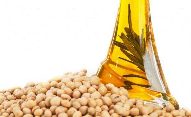 Диета на основе сои улучшает прочность костей у женщин