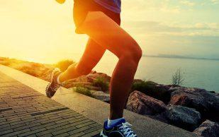 Потребление протеина и здоровые кости