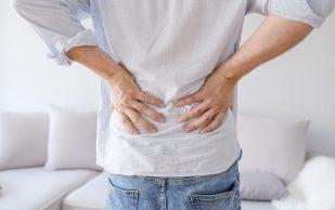 Жир может избавить от боли в спине — ученые