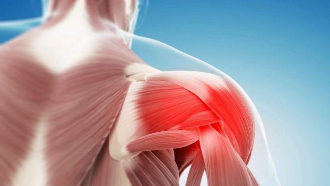 5 упражнений для укрепления коленных суставов