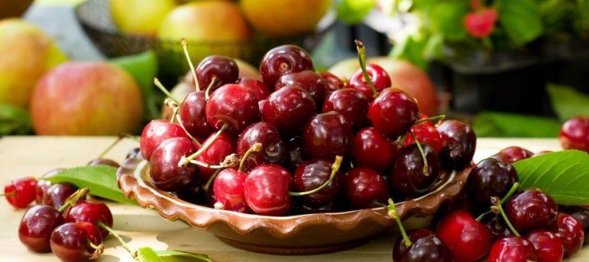 Лечит подагру и бессонницу: названы целебные свойства вишни
