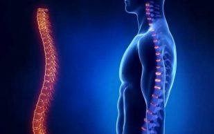 Упражнения для растяжения позвоночника: борьба с болезнями без лекарств